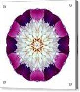 Bowl Of Beauty Peony II Flower Mandala White Acrylic Print