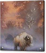 White Buffalo Spirit Acrylic Print