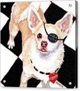 White Chihuahua - Pistachio Acrylic Print