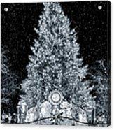 White Christmas In Texas Acrylic Print