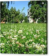 White Clover Field And The Playground Acrylic Print
