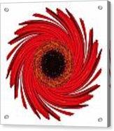 Dying Amaryllis Vii Flower Mandala White Acrylic Print