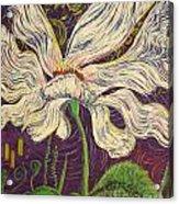 White Flower Series 6 Acrylic Print