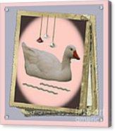 White Goose Series 2 Acrylic Print