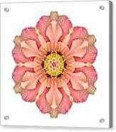 Hibiscus Rosa-sinensis I Flower Mandala White Acrylic Print