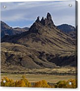 White Horse And Fall Colors   #0354 Acrylic Print