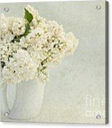 White Lilac In A Cream Jug Acrylic Print