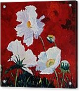 White On Red Poppies Acrylic Print
