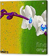 White Orchids On Yellow And Green Acrylic Print