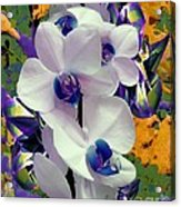 White Orchids With A Touch Of Purple Acrylic Print by Doris Wood