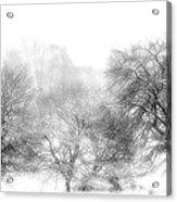 White Out Acrylic Print