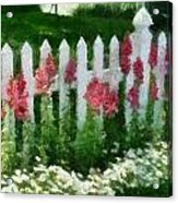 White Picket Fence Acrylic Print