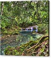 White River Falls Acrylic Print