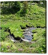 White River Pass Stream Second View Acrylic Print