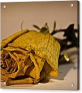 White Rose For Mom Acrylic Print