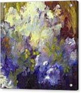 White Roses In Sunlight Acrylic Print