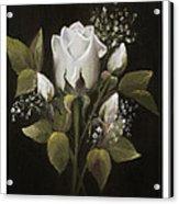 White Roses Acrylic Print by Nancy Edwards