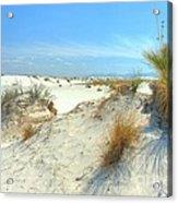 White Sands Foliage Acrylic Print by John Kelly