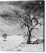 White Sands National Monument 1 Light Mono Acrylic Print