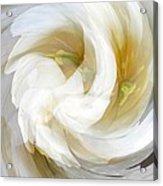 White Satin Swirl Acrylic Print