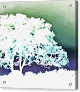 White Silhouette Of Oak Tree Against Blue And Green Watercolor Background Acrylic Print