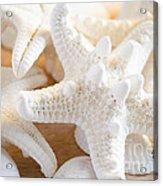 White Starfish 2 Acrylic Print