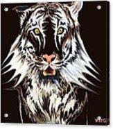 White Tiger 1 Acrylic Print