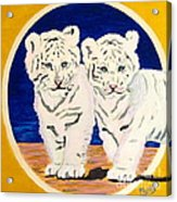 White Tiger Twins Acrylic Print