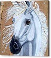 White Unicorn On Wood Acrylic Print