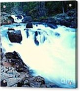 White Water On The Ohanapecosh River  Acrylic Print