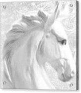 White Winter Horse 1 Acrylic Print