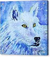 White Wolf - Aurora Nights In Blues - Square Acrylic Print