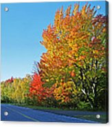 Whitefish Bay Scenic Byway Acrylic Print