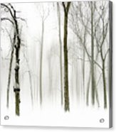 Whiter Shade Of Pale Acrylic Print