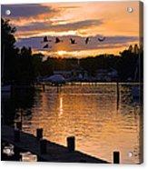White's Cove Silhouette Acrylic Print