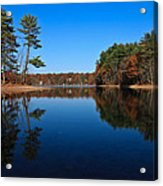 Whites Pond Acrylic Print by Corey Sheehan