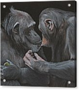 Who Gives A Fig? Acrylic Print