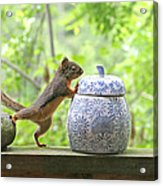 Who's Been In The Cookie Jar? Acrylic Print