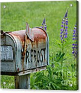 Whose Mailbox This Is I Think I Know Acrylic Print