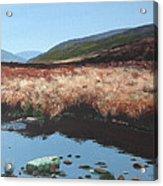Wicklow Bogscape Acrylic Print