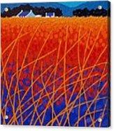 Wicklow Meadow Acrylic Print by John  Nolan