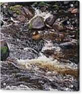 Wicklow River # 1 Acrylic Print