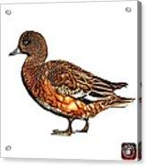Wigeon Art - 7415 - Wb Acrylic Print