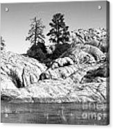Willow Lake Number One Bw Acrylic Print by Heather Kirk