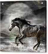 Wild As The Sea Acrylic Print by Carol Cavalaris