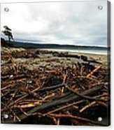 Wild Beach New Zealand Acrylic Print