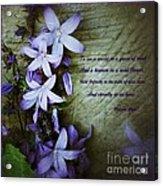 Wild Blue Flowers And Innocence 2 Acrylic Print