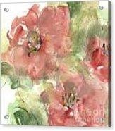 Wild Camellia 1 Acrylic Print