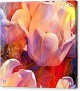 Wild Colors Acrylic Print