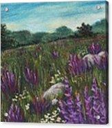 Wild Flower Field Acrylic Print